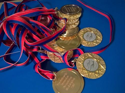 medaille zwemclub 2017